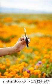 cannabis  distillate vape pen in a field o flowers in spring