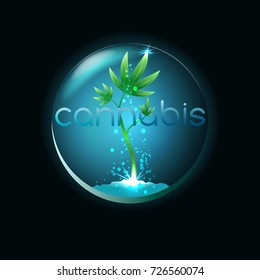 Cannabis emblem, logo for medical marijuana shop, illustration