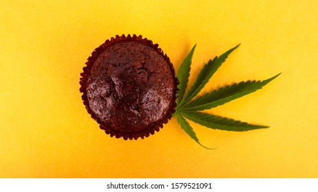cannabis food,chocolate muffin cake with marijuana on yellow background.
