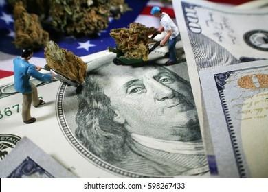 Cannabis High Quality
