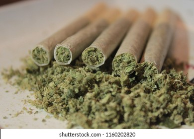 Cannabis joints, close up and lined up neatly. Laying on a bed of milled cannabis.