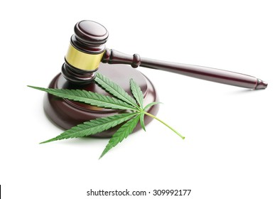 the cannabis leaf and judge gavel