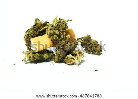 Cannabis Marijuana Buds Cigarette Butt Stock Photo Edit Now