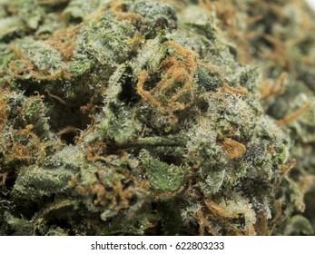Cannabis / Marijuana Flower