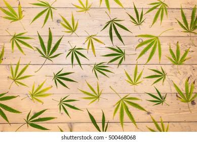 Cannabis, marijuana leaves on the wooden floor, unique retro background