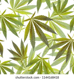 cannabis marijuana leaves seamless pattern on white background. texture for design textile, wallpaper