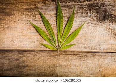 Cannabis marijuana wooden background