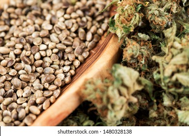 Cannabis Medical Marijuana Buds and Seeds. Wooden bowl of cannabis hemp seeds. Hemp Seeds Cannabis Buds Medical Marijuana Background