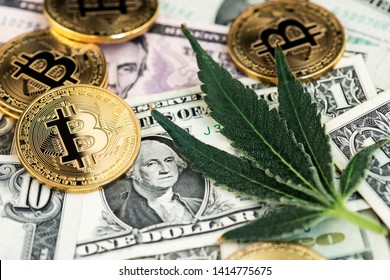 Cannabis Medical Marijuana Leaf with Bitcoin Cryptocurrency coins and US Dollar Banknotes. Cannabis Medical Marijuana Business Concept. BTC Bitcoin Dollar Marijuana Cannabis CBD Hemp Stock Market
