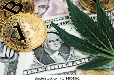 Cannabis Medical Marijuana Leaf with Bitcoin Cryptocurrency coins on One Dollar Bill. CBD THC BTC USD Stock exchange cannabis concept.