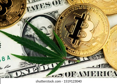Cannabis Medical Marijuana Leaf and Bitcoin BTC Cryptocurrency coins on US Dollar Banknotes. Cannabis Medical Marijuana Business Concept. BTC Bitcoin Dollar Marijuana Cannabis CBD THC Stock Market