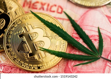 Cannabis Medical Marijuana Leaf and Bitcoin BTC cryptocurrency coins lying on Mexican Pesos MXN currency banknotes. CBD THC BTC MXN Cannabis Marijuana Mexico Pesos Bitcoin Cryptocurrency