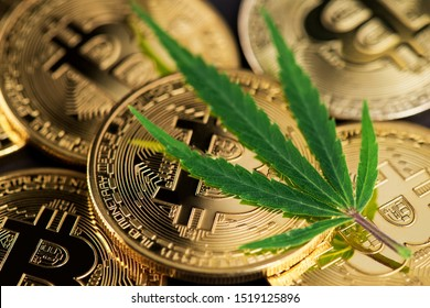 Cannabis Medical Marijuana Leaf on Bitcoin BTC Cryptocurrency coins. BTC THC CBD Cannabis Marijuana Bitcoin Dollar USD Cryptocurrency