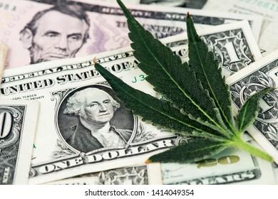 Cannabis Medical Marijuana Leaf and US Dollar Banknotes. Marijuana business concept. CBD Medical Marijuana Dollar THC Cannabis