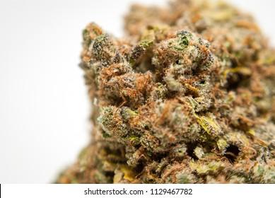 Cannabis Nug - Strain: Blue Dream