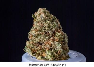 Cannabis Nug - Strain: Chem-Dawg