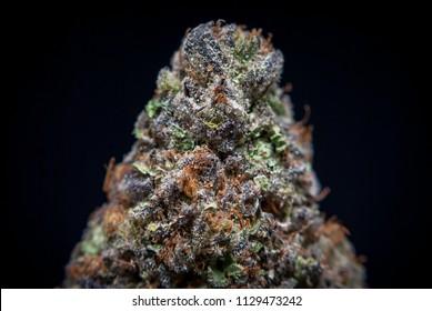 Cannabis Nug - Strain: Sherbert