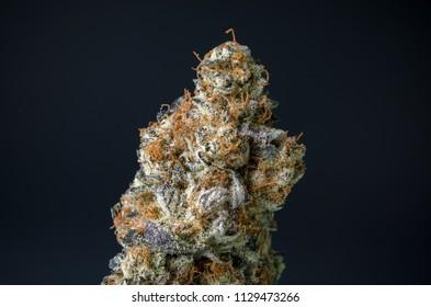 Cannabis Nug - Strain: White Heat