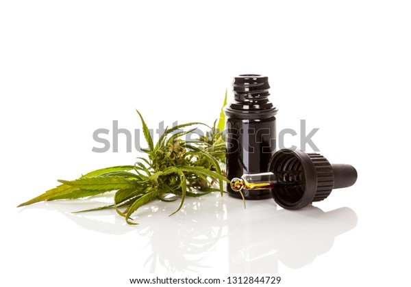 Cannabis oil cannabidiol in pipette with marijuana plant isolated on white. CBD concept.