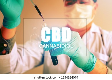 Cannabis oil, CBD concept, Chemist conducts experiments by synthesising compounds with using dropper in a test tube.