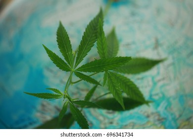 Cannabis on the background of the globe