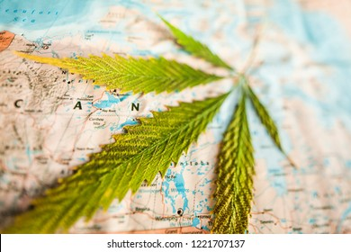 cannabis on canada map. legalization concept