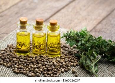 Cannabis seeds and CBD oil cannabis extract, green hemp leaf background, Medical cannabis concept.
