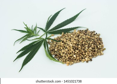 cannabis seeds and green leaves isolated