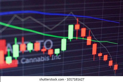 Cannabis stock fluctuating