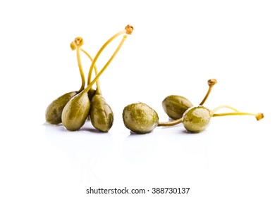 canned capers isolated on a white reflective background