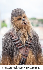 CANNES, FRANCE - MAY 15,  2018: Chewbacca attends the photocall for 'Solo: A Star Wars Story' during the 71st annual Cannes Film Festival at Palais des Festivals