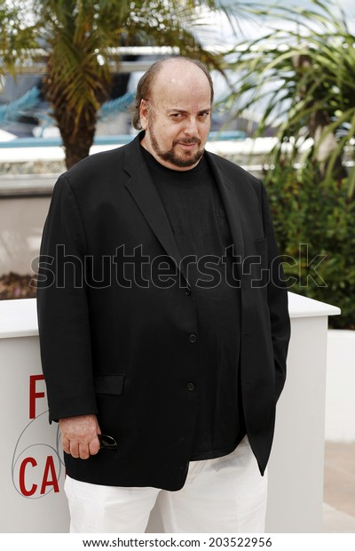 CANNES, FRANCE - MAY 21: Director James Toback attends the photo-call of 'Seduced and Abandoned' during The 66th Cannes Film Festival on May 21, 2013 in Cannes, France