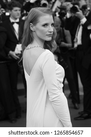 CANNES - MAY 21, 2013: ( Image digitally altered to monochrome )  Jessica Chastain attends the Behind the Candelabra Premiere - The 66th Annual Cannes Film Festival