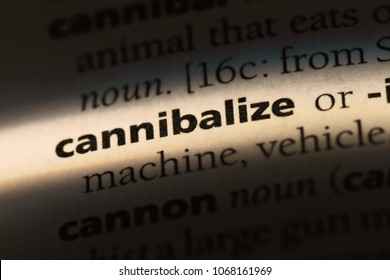 cannibalize word in a dictionary. cannibalize concept.