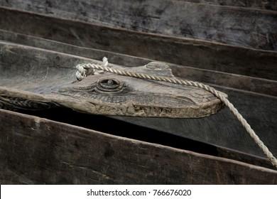 Canoe with Crocodile Head on Sepik River - Papua New Guinea