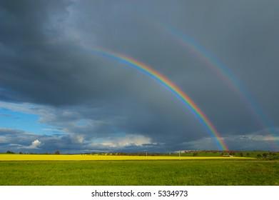 Canola Field and Rainbow