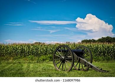 A canon sits near a corn field at a Civil War battlefield in Virginia.