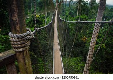 A canopy walk in Kakum National Park, Central Region, Ghana.