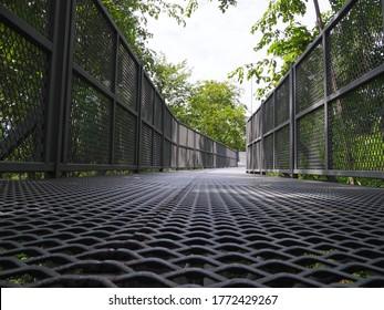 The Canopy walkway visit many kinds of plants, Queen Sirikit Botanic Garden Chiangmai Thailand,metal walkway in forest, iron bridge