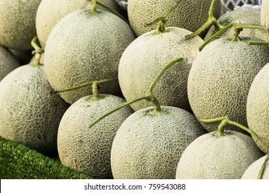 Cantaloupe melons in market ,Cantaloupe melons background,cantaloupe melon on hay grass background.Rock melon sell in the market.