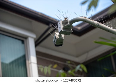 A cantilevered modern white security CCTV camera with pigeon spikes on top, pointing and checking to all coming visitors in a modern house's courtyard area during the day.