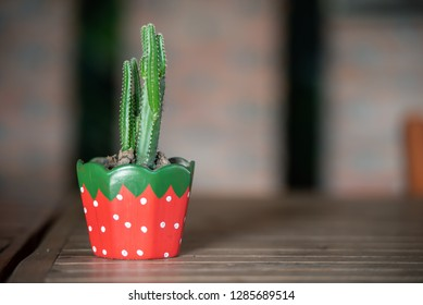 Cantus tree in red pot on wooden table with space for text.