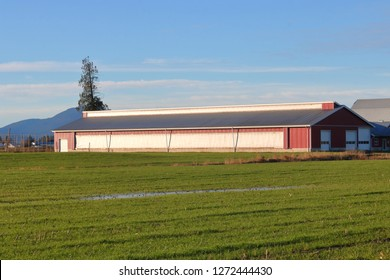 A canvas cloth is used to cover openings on a farm building to protect livestock and poultry from the cold winter temperatures.