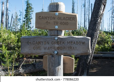 Canyon Creek Meadow Trail Sign after being freshly installed