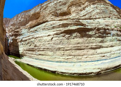 The canyon Ein Avdat is formed by the Qing River. Israel. The greenish mirror lake. Picturesque waterfall in the middle of the Negev desert. Photo taken with a fisheye lens