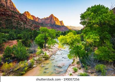 Canyon zion