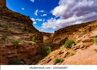 Canyonlands Color Contrast - Moab Utah