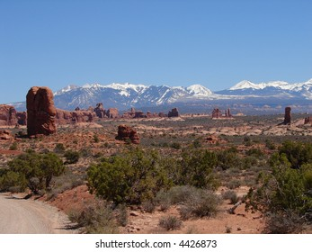 Canyonlands desert scene with La Sal mountains in background.