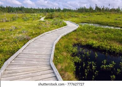 Cape Breton Highlands National Park in Nova Scotia. Nova Scotia, Canada.