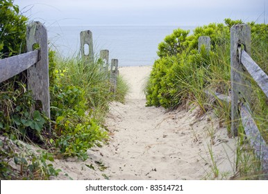 """""""Cape Cod Beach Pathway""""  A beach pathway leading to the sea on Cape Cod in Massachusetts."""